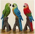 Papagal multicolor 1