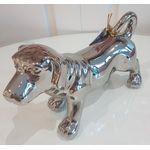 Catel argintiu 1